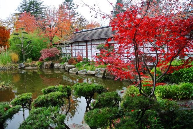 Allons faire un tour au jardin Japonais de l\'île de Versailles ...